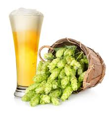 Heat hits Hops Harvest, brews Bad times for Beer !