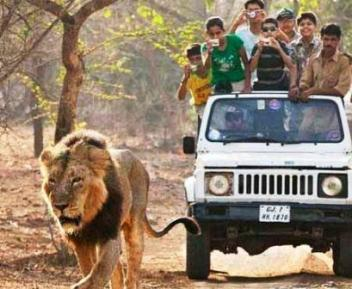 57 Hectares of Gir Wildlife Sanctuary encroached