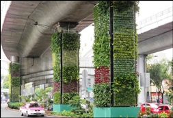 Vertical Garden Now In Bihar