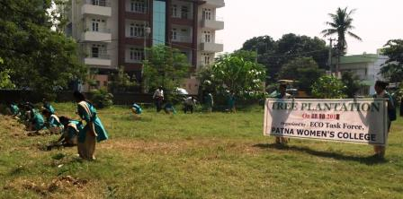 Eco Task Members planted 99 saplings